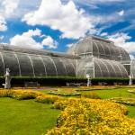 Kew image